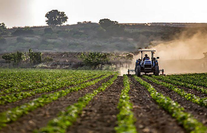 Tractor mowing crops